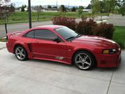 FORD MUSTANG 2002 - Ford Mustang